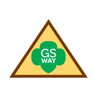 Award And Badge Explorer Girl Scouts