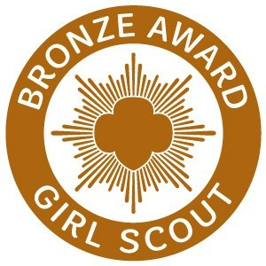 Girl Scout Bronze Award