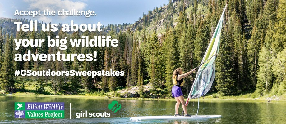 Accept the challenge. Tell us about your big wildlife adventures! #GSoutdoorsSweepstakes