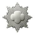 Silver Award