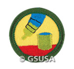 Junior badge do it yourself online girl scout field trips junior badge do it yourself online solutioingenieria Images