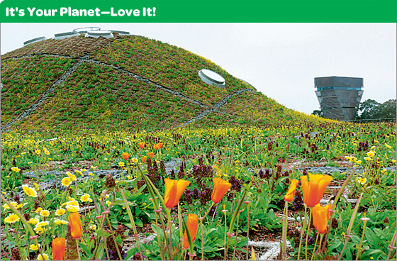 It's Your Planet—Love It!
